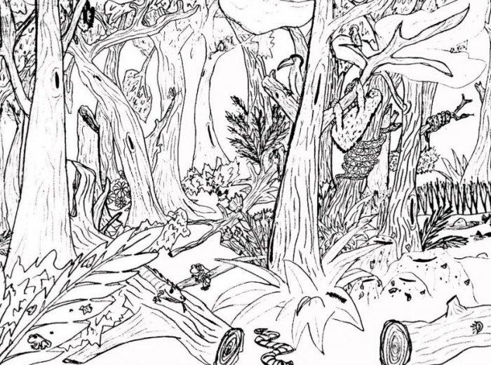 Gambar Sketsa Hutan
