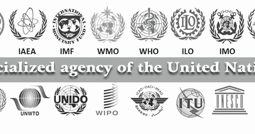 ORGANISASI DIBAWAH naungan PBB