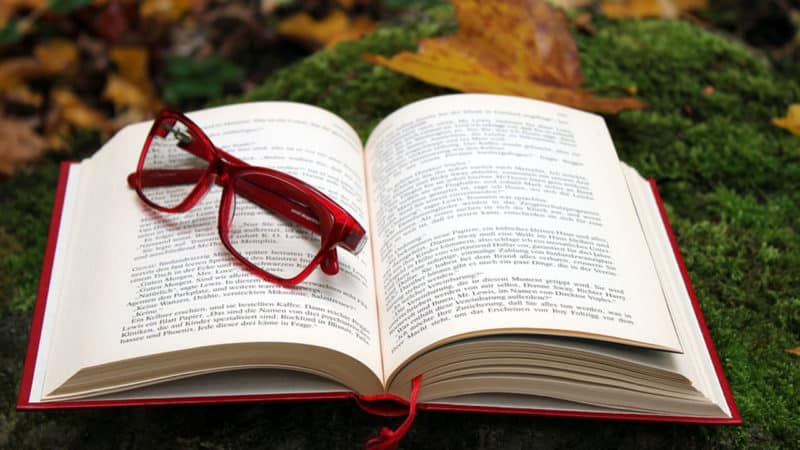 Contoh Resensi Buku