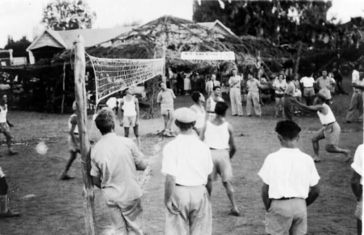 Permainan Bola Voli Di Indonesia