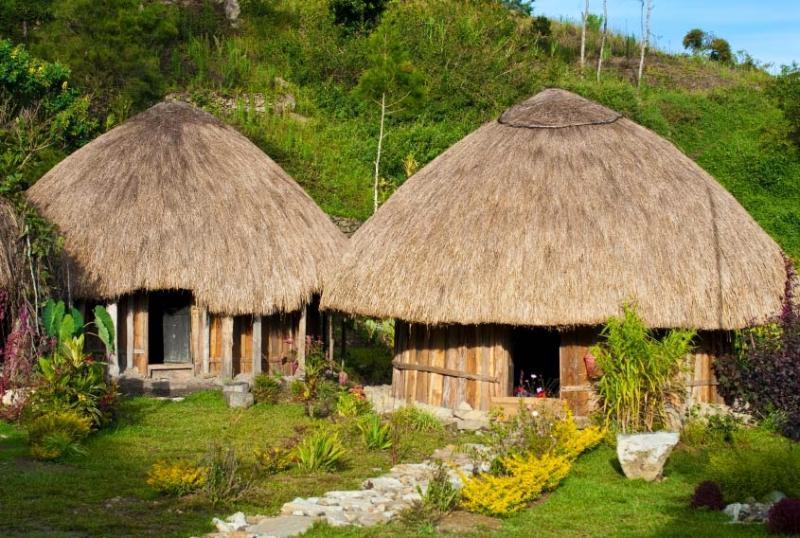 Rumah Honai (Rumah Adat Provinsi Papua)