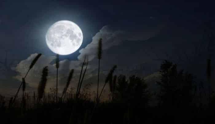Angin Malam