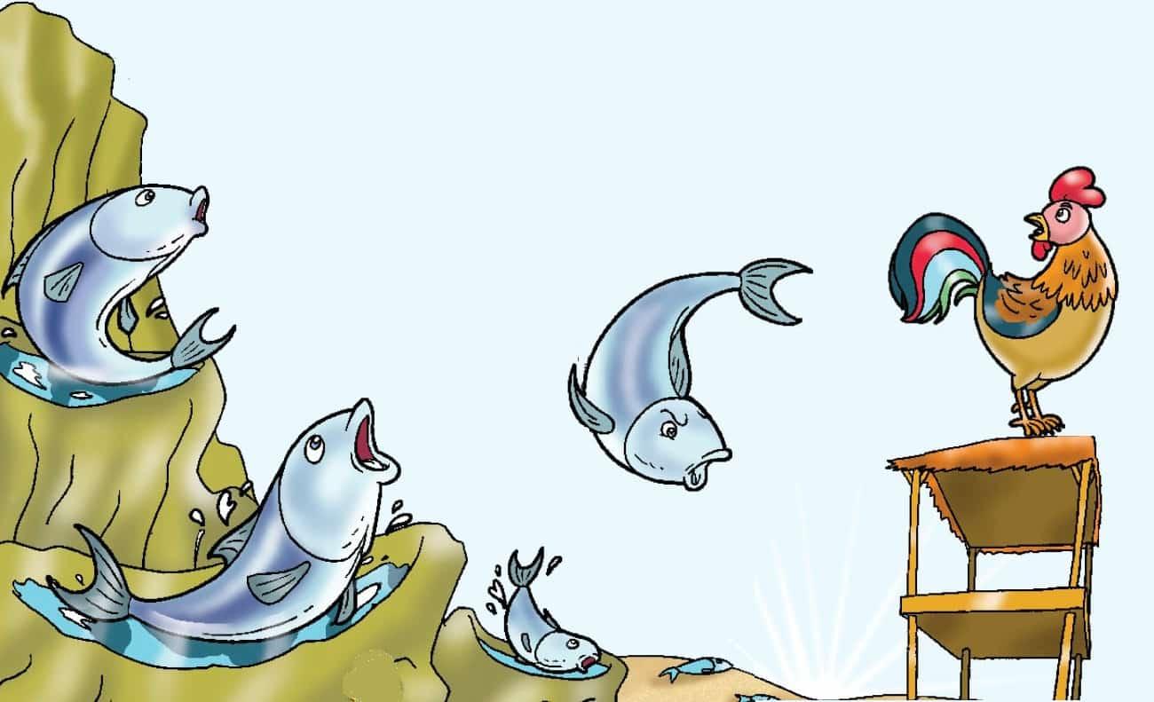 Cerita Fabel Ikan Tongkol dan Ayam