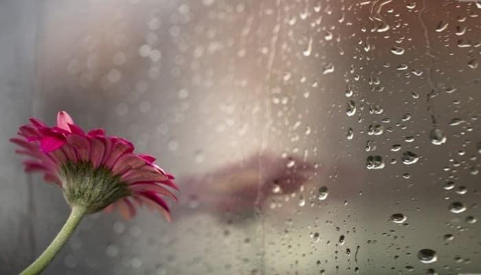 Reda Hujan