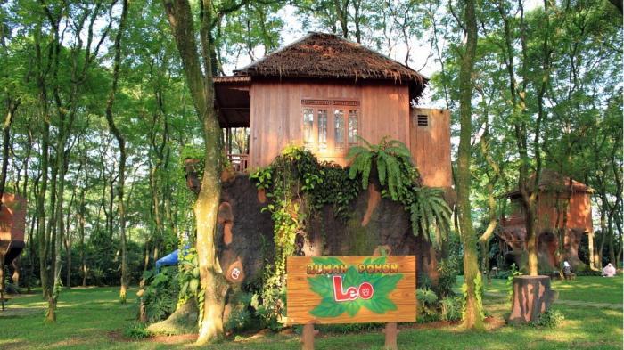 Rumah Pohon Leo, Bogor