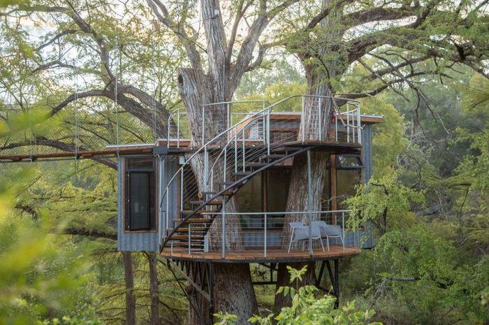 Rumah pohon di Pulau Henry