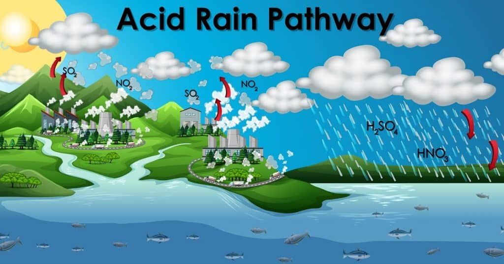 DIAGRAM SHOWING ACID RAIN PATHWAY ILLUSTRATION